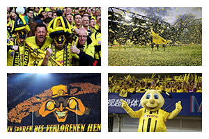 Voyage sport Football DORTMUND - Groupe Couleur